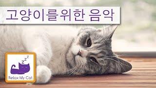 고양이 음악 휴식 - 수면 음악은 당신의 고양이를 진정 도움