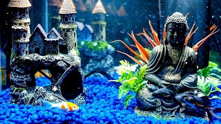 Fish Tank for Cats To Watch | 12 Hour Aquarium | Underwater Bubble Sounds