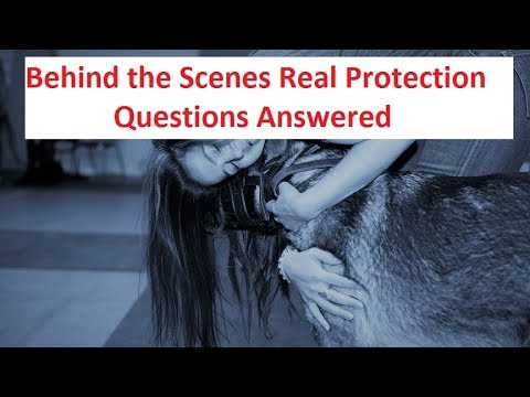 What is Personal Protection Dog Training? (K9-1.com)