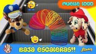 Juguete GIGANTE de moda / Muelle Loco/Slinky  ¡Baja Escaleras! Patrulla canina español