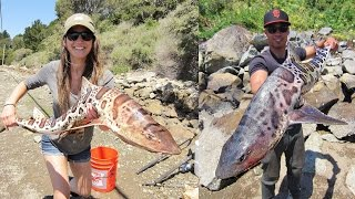 monster leopard shark fishing adventure 52 inches 30 lbs