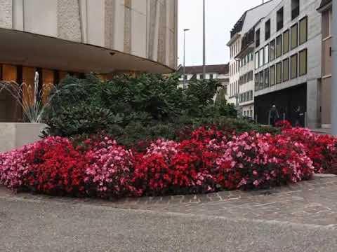 Basel, Bank for International Settlement