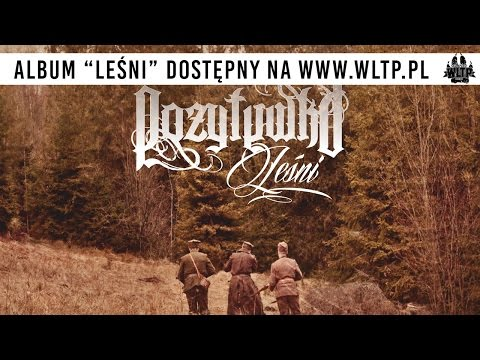 "Pozytywka - ""Leśni"" promo"