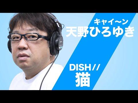 猫 / DISH// をキャイ~ン天野が歌ってみた【AMANO-KUN TAKE No.1】