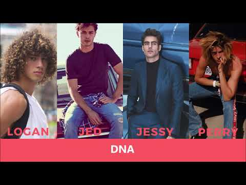 DNA - Little Mix (Male Version)
