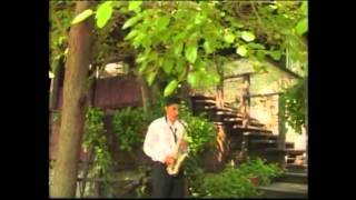 NELU DE LA GALICEA - Instrumentala - Muzica populara 2013 - Hd