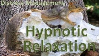 STGEC & CTRC: Hypnotic Relaxation (2016)