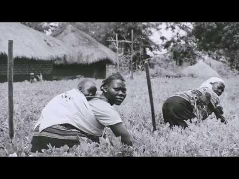 SELF Globe | Progetto di sviluppo rurale in Uganda