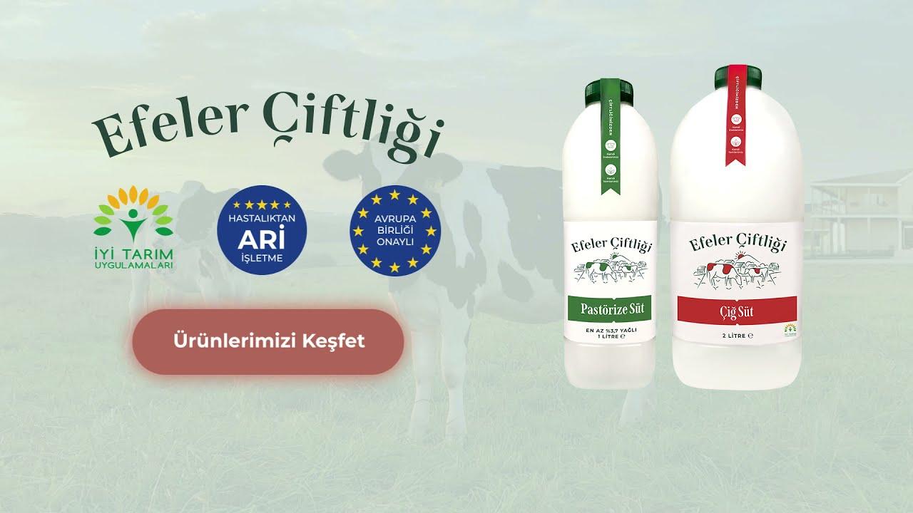 Efsane ZEYBEKLER - Denizli Efeleri