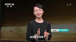 《人物·故事》 20200410 探索生命演化之谜·孟庆金| CCTV科教