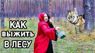 Лайфхаки Как Выжить В Лесу