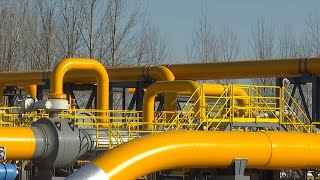 New section of China-Russia east-route natural gas pipeline put into use