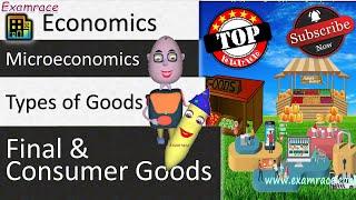 Types of Goods - Macroeconomics: Fundamentals of Economics