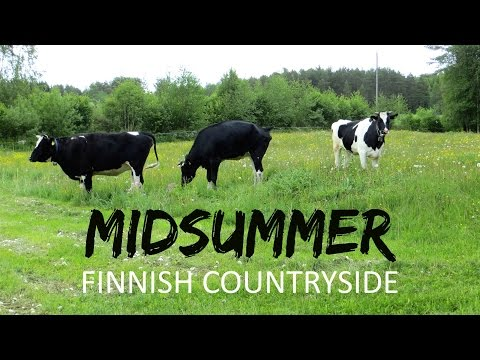Midsummer In Joutsa || Finnish Countryside