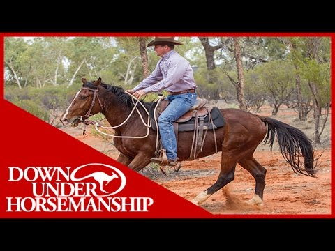 Clinton Anderson - Outback Adventure 13 of 14