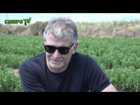 Panos (Panagiotis) Chamakiotis - COMPO EXPERT Group -The Stevia Programme
