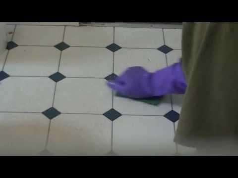 Stain cleaner on kitchen linoleum
