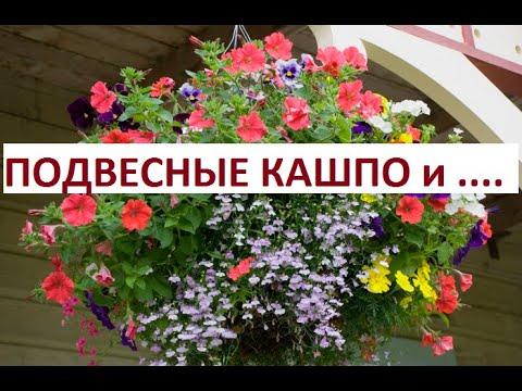 Формируем подвесное кашпо комбинируем цветы.