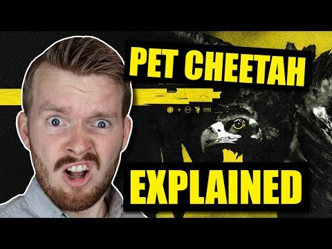 """Pet Cheetah"" Twenty One Pilots Song Lyrics Explained!!!"