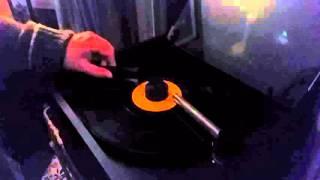 VPI Record Cleaner