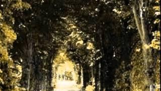 Janne Hurme - Taivaan Tie