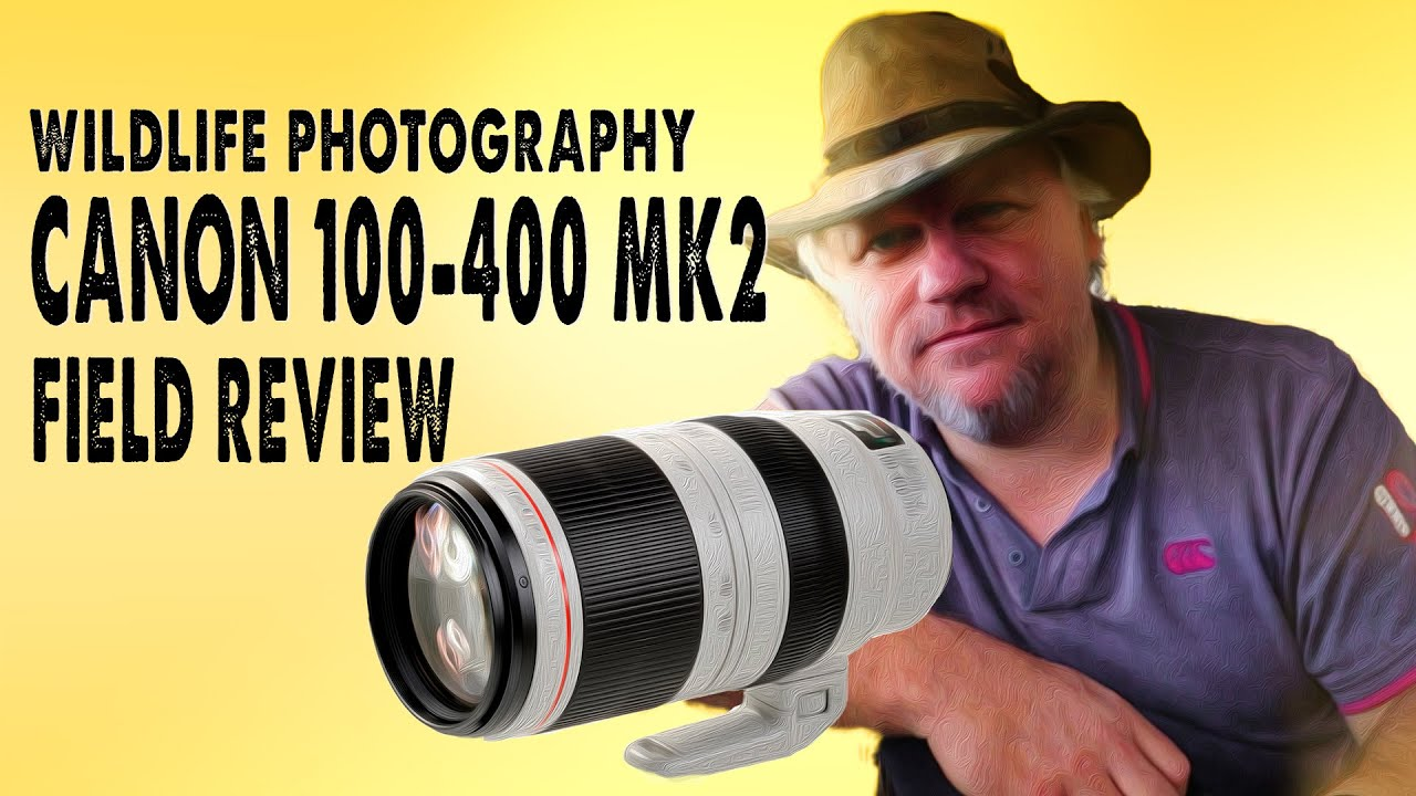 Canon 100 400mm F 4 5 5 6 L Is Ii Wildlife Bird Field Review Youtube