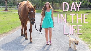 DAY IN THE LIFE OF AN EVERYDAY EQUESTRIAN! [BARN VLOG]!