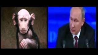 """Путин начал третью мировую войну. Путин """"потерял связь с реальностью"""" Война в Крыму"""