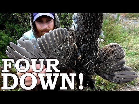 Shooting 4 WILD BIRDS at ONCE for Food! Ep4 | Eating Northern Grouse in SURVIVAL CHALLENGE!