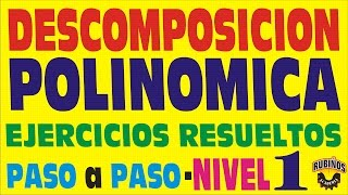 DESCOMPOSICIÓN POLINÓMICA - Ejercicios Resueltos  - Nivel 1