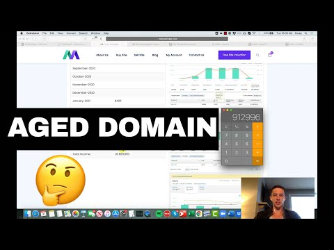 Should You Buy An Aged Domain?  Odys.  Motioninvest.  My 2 Cents.