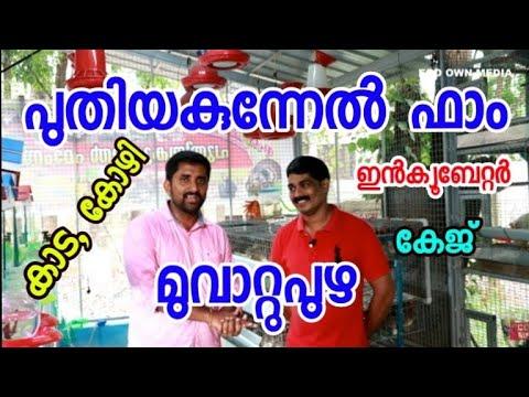 Puthiyakunnel farm muvattupuza [ECO OWN MEDIA] by Rasheed PM malayalam