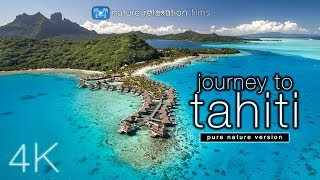 JOURNEY to TAHITI (4K UHD Nature Sounds Only) Whales & Beaches - Ambient Film for Relaxation thumbnail