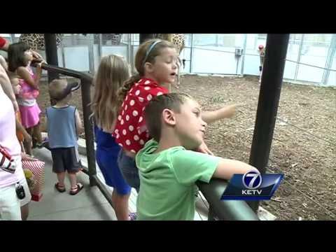 New giraffe herd room open at Omaha Henry Doorly Zoo