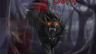 Коты Воители в виде волков