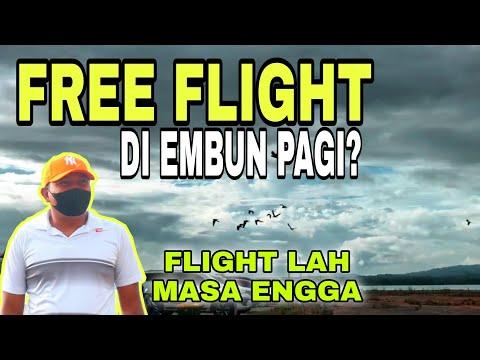 FREE FLIGHT EMBUN PAGI