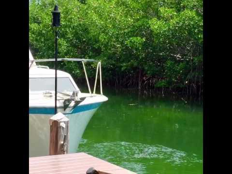 Geiger Key The Backside Of Key West!