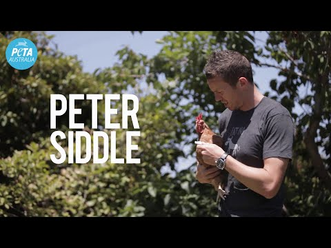 Peter Siddle: Plant-Powered Athlete