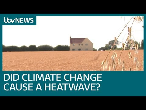 Is climate change causing the worldwide heatwave? | ITV News
