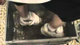 Nike/Buffalo Schuhe im Schnee/Asche spielen.