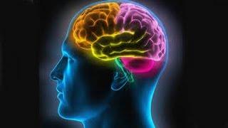 Test de rapidité mentale. Test psychotechnique en ligne