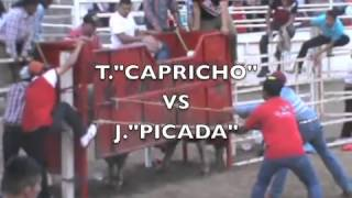 LOS TOROS EJECUTORES DE RANCHO EL CERRITO EN ATOYAC 2015