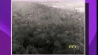 TUAN ASMAWI-corporate video - Majlis Perbandaran Petaling Jaya