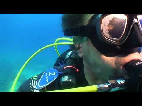 Diveworld Videos | Red Sea Wash & Brush Up