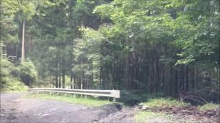 群馬県 林道 二子山線(3/4 ・矢久峠側・崩落)