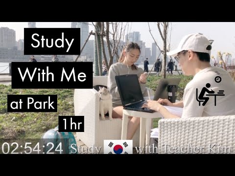 STUDY (KOREAN) WITH ME (1hr) | by the River | Wind ASMR