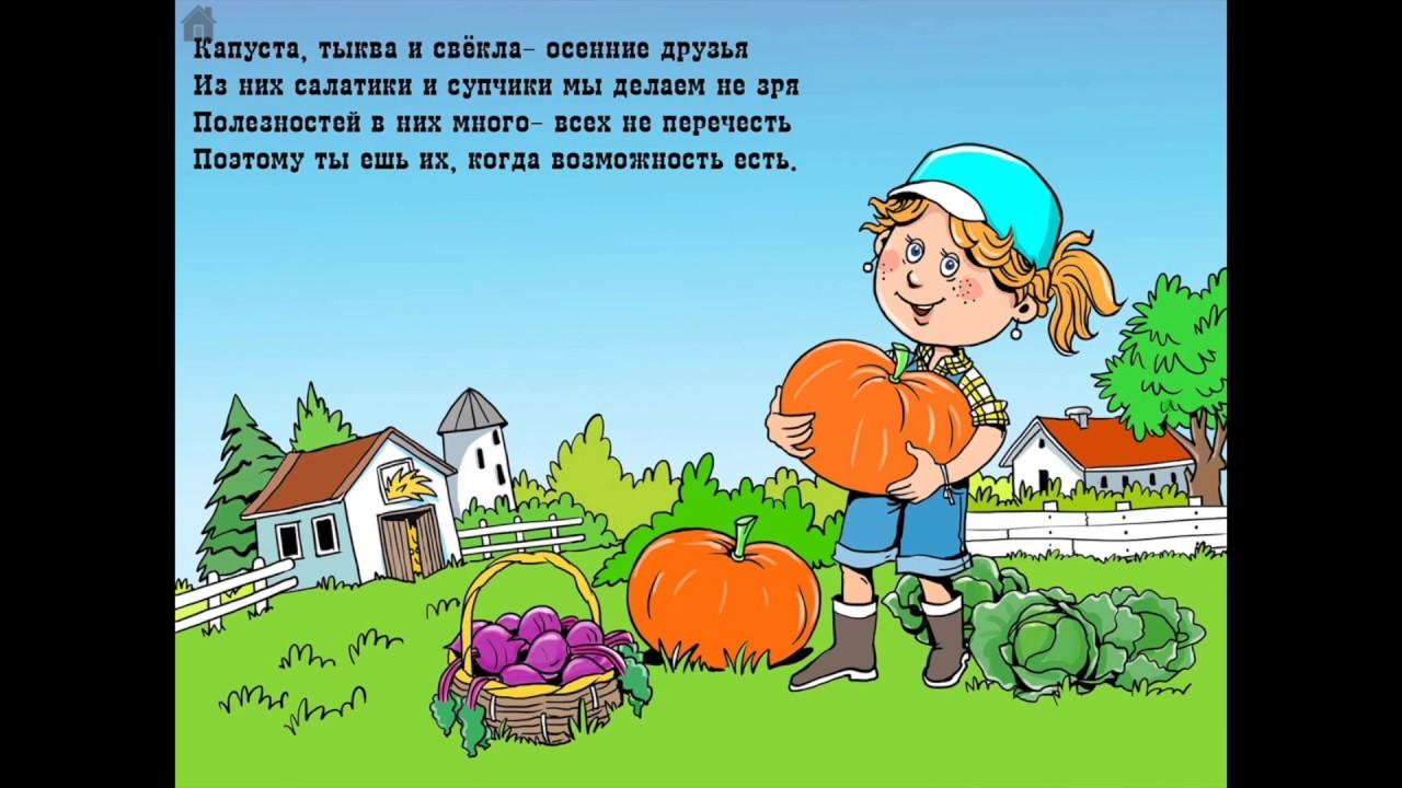 Об овощах в стихах