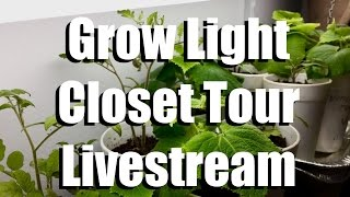 Grow Light Closet Tour and Seed Organizing Box Tips- Livestream (replay)