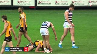 Qualifying Final 2014 - Hawthorn v Geelong Highlights
