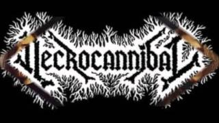 Necrocannibal - Somnambuliformic Possession ( Full Album )